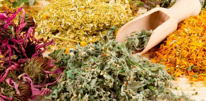 Propiedades curativas de hierbas medicinales