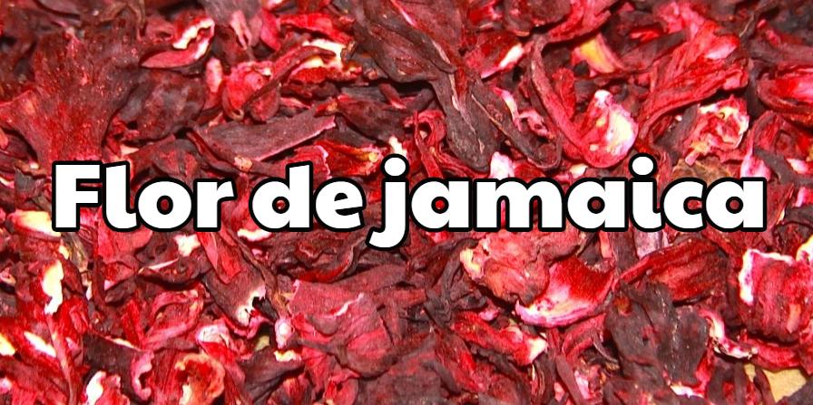 Flor de jamaica para perder peso