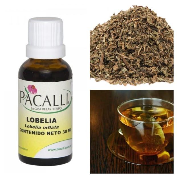 Usos de la Lobelia