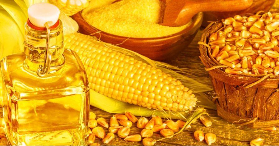 Propiedades del aceite de maiz para reducir el colesterol